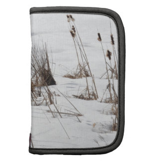 Bulrushes in frozen lake folio planner