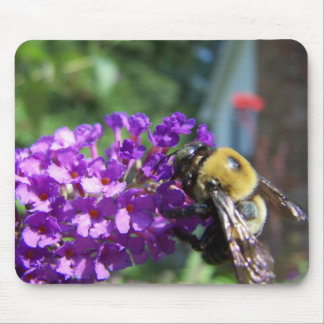 Bumble Bee02 Mouse Pads