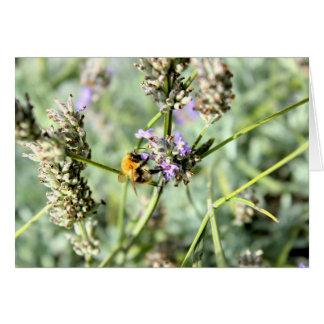 Bumble bee card