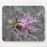 Bumble Bee Mouse Mats