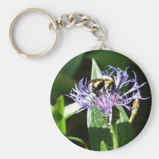 bumble bee,on a bachelor button key chain