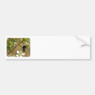 Bumble Bee on a Bramble 9Y042D-007 Bumper Sticker