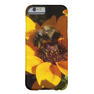 Bumble Bee on Black Eyed Susan Barely There iPhone 6 Case