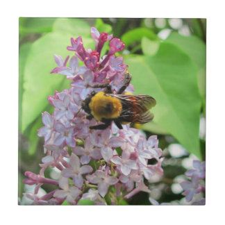 Bumble Bee On Lilac Ceramic Tile