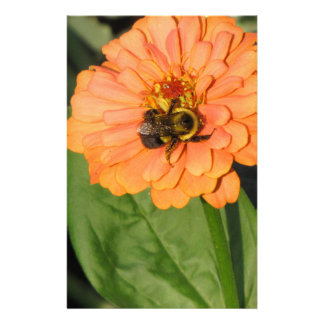 Bumble Bee on Orange Zinnia Stationery