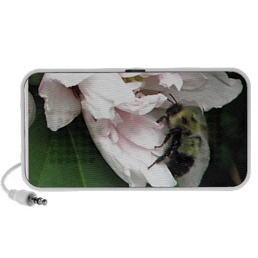 Bumble Bee on Peony Blossom iPhone Speaker