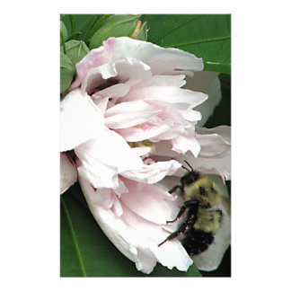 Bumble Bee on Peony Blossom Stationery Design