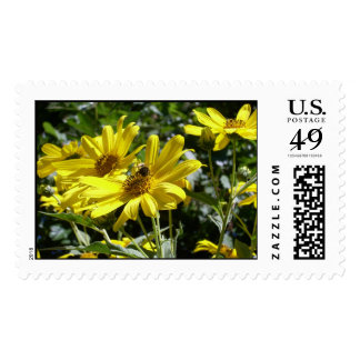 Bumble bee on Sunflower Postage