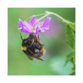 Bumble Bee Photo Canvas Prints