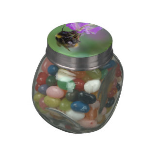Bumble Bee Photo Jelly Belly Candy Jar