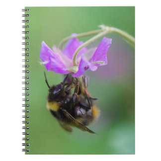 Bumble Bee Photo Notebook