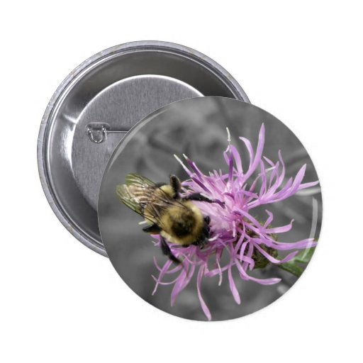 Bumble Bee Pins