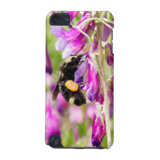 Bumble Bee Pollinating Sweet Pea Flowers iPod Touch (5th Generation) Cover