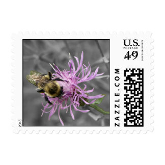 Bumble Bee Postage Stamp