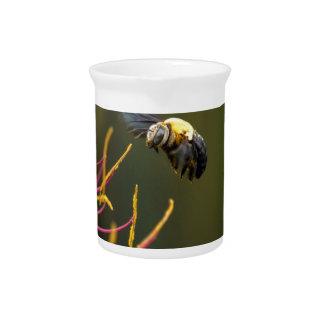 BUMBLE BEE QUEENSLAND AUSTRALIA BEVERAGE PITCHER
