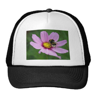 bumble bee trucker hat