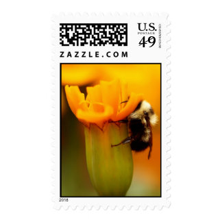 Bumble Bee with Marigold Postage Stamp
