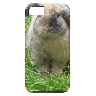 Bumble Rabbit iPhone SE/5/5s Case