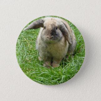 Bumble Rabbit Pinback Button