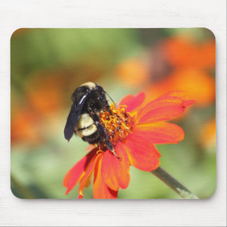 Bumblebee and Orange Zinnia Flower Mouse Pad