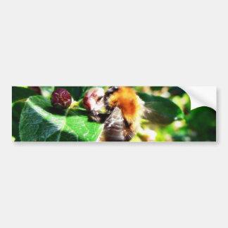 Bumblebee Bumper Stickers