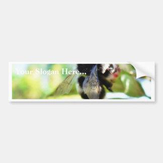 Bumblebee Collecting Polen Bumper Stickers