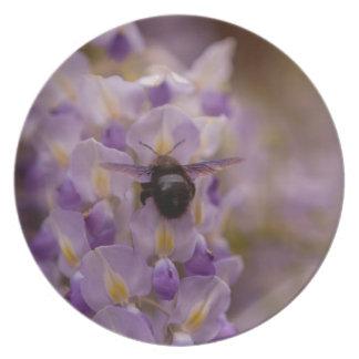 bumblebee dinner plate