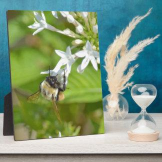 Bumblebee & flowers plaque