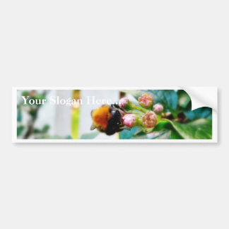Bumblebee Insect Bumper Sticker