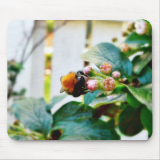 Bumblebee Insect Mousepads