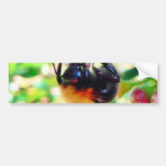 Bumblebee Macro Bumper Stickers
