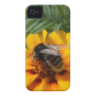 Bumblebee Nature Blackberry Bold Case