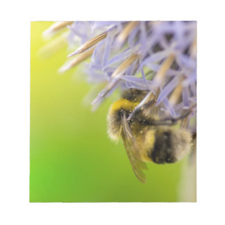 Bumblebee on a flower notepad