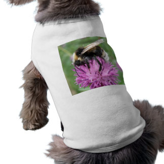 Bumblebee on a Thistle Dog Outfit Tee