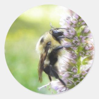 Bumblebee On Agastache Flower Classic Round Sticker