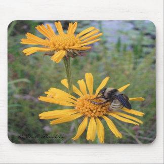 Bumblebee on Balduina Mousepad