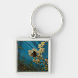 bumblebee on blue key chains