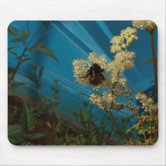 bumblebee on blue mouse pad