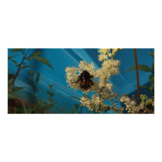 bumblebee on blue rack card design