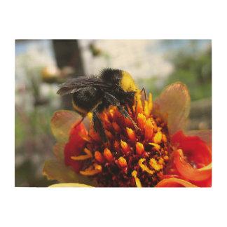Bumblebee on Dahlia Wood Wall Art