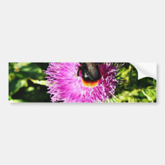 Bumblebee On Flower Bumper Sticker