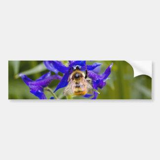 Bumblebee on Purple Flower Bumper Stickers