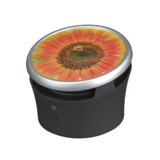 Bumblebee on sunflower, Community Garden Speaker