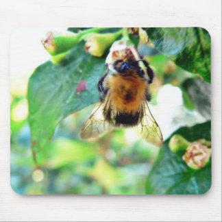 Bumblebee On Tree Mousepad