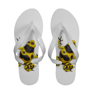 Bumblebee Poison Dart Frog Sandals