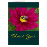 Bumblebee Thank You Cards