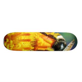 Bumblebees Flowers Macro Skate Boards