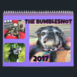 "Bumblesnot 2017 Calendar<br><div class=""desc"">Spend 365 days with The Bumblesnot &amp; Bunch!  12 full color photos along with 12 original Bumblebyes will keep you smiling every month of 2017!  We donate all proceeds to pet rescue!  Thanks!</div>"