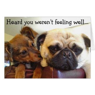 Bumblesnot card: Heard you weren't feeling well Card