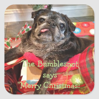 Bumblesnot Christmas Stickers